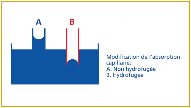 Modification absorption capillaire